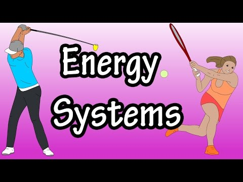 Energy Systems ATP Energy In The Body Adenosine Triphosphate Glycolysis