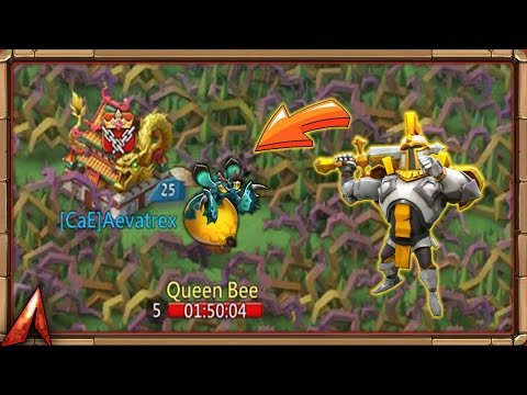 Taking Revenge On Queen Bee! Hunting Lv5 Monster And Legendary Loot Quest! Lords Mobile