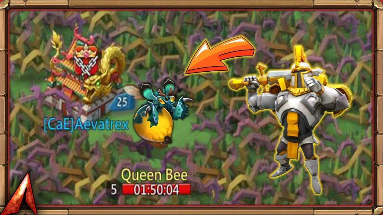 Taking Revenge on Queen Bee! Hunting Lv5 Monster and