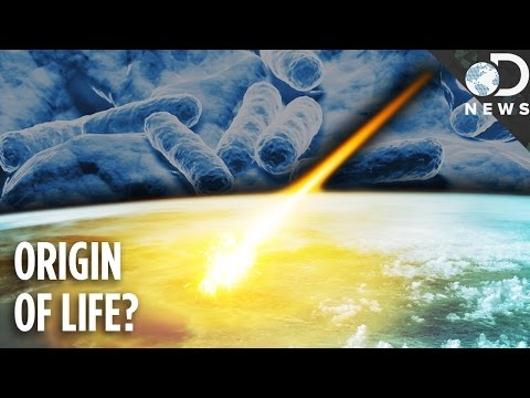 Could Life On Earth Have Come From A Comet?
