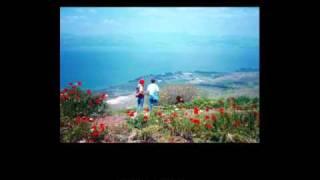 נועה  (Noa), אריק לביא , השיר והמילים