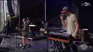 Bleachers - Reckless Love (Live @ Lollapalooza 2014)