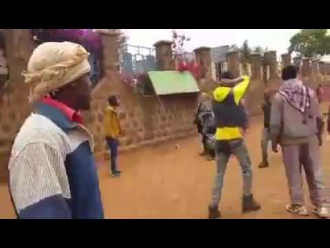 Hiriira mormii guddiacha Oromiyaa godina baale magaala ginnir hag 6.2016