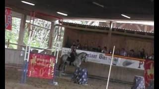Zafio Working Equitation Pullman City