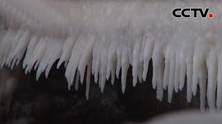 山东烟台:蓬莱阁栈道出现冰凌景观  《中国新闻》CCTV中文国际 - YouTube
