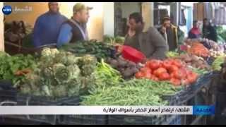 الشلف: ارتفاع أسعار الخضر بأسواق الولاية