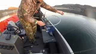 Fishing Banks Lake White fish