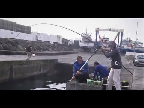 Fishing video, Fishing