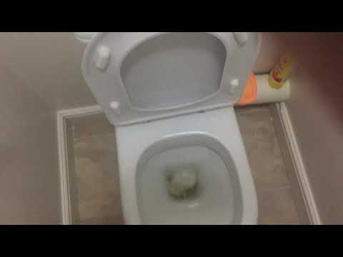 Toilet Review #4- My Downstairs Toilet