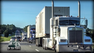 Sal C. Machinery Movers, Inc.  Rolling CB Interview™