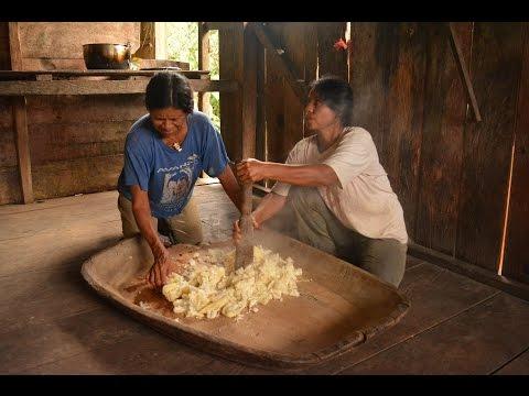 Community-Based Tourism in the Napo River Region, Ecuadorian Amazon