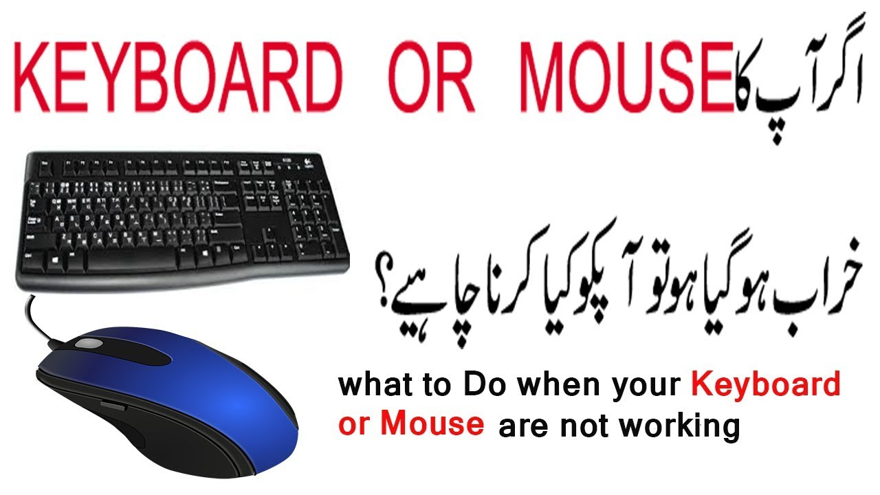 mouse and keyboard not working windows 10