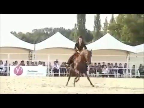 Reqs Oynayan at yorga at atlar yorga