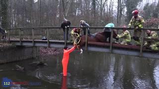 Brandweer bevrijdt paard van brug in Winterswijk