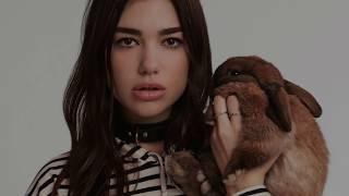 Dua Lipa  - Homesick feat. Chris Martin (Lyrics / Lyrics Video)