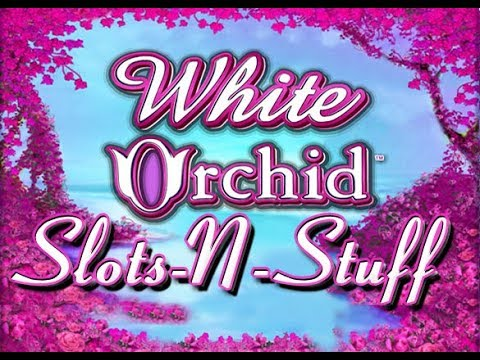 White Orchid Slot Play High Limit $960 a spin