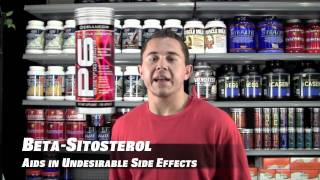 alpha nutrition p6 by cellucor supplement review