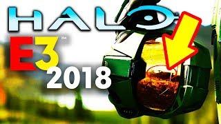 Halo Infinite Trailer: 40+ min COMPLETE Breakdown - Easter Eggs, Wildlife, Text, Weather, Etc.