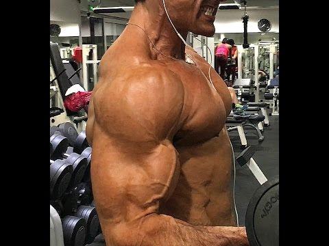 Mon Top 5 des exercices pour les biceps