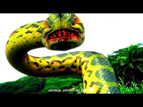 Download Film Ular Raksasa Piranhaconda - Sinopsis Alur Cerita Piranhaconda (2012) Sub Indo HD