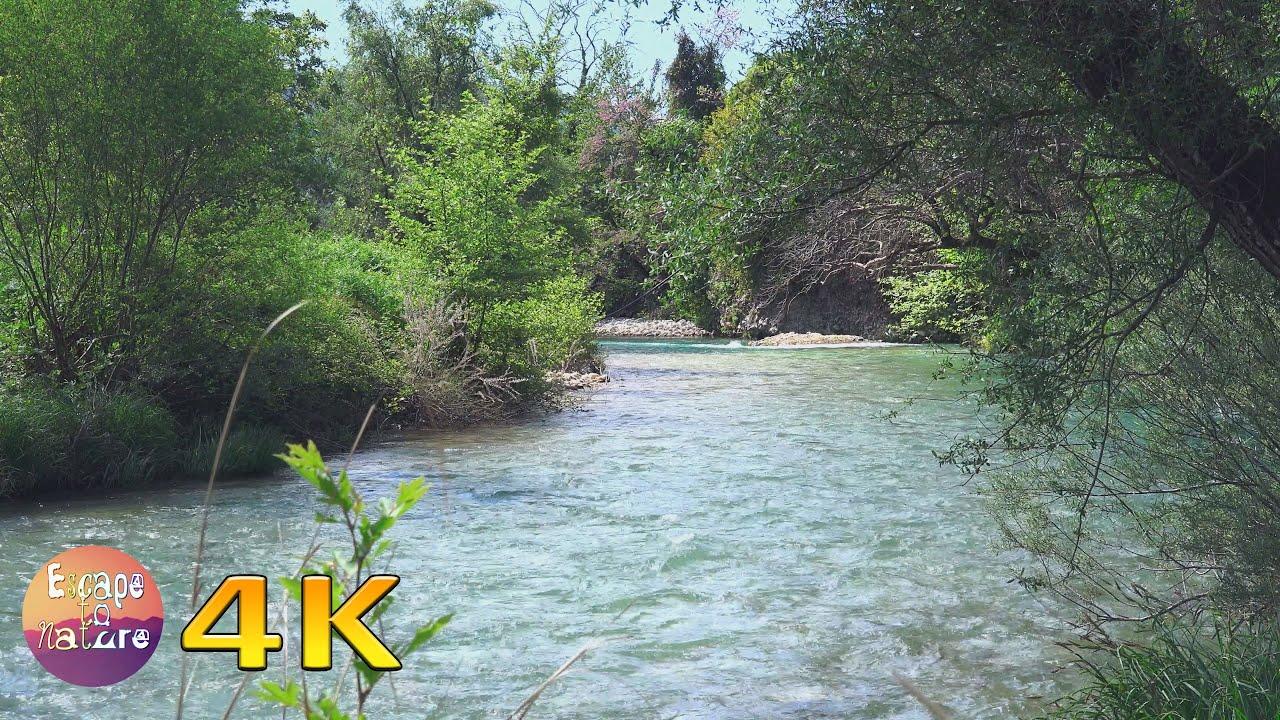 Beautiful Erymanthos river-Calming river, cricket & birds sounds-Relaxing nature sounds - 4K video