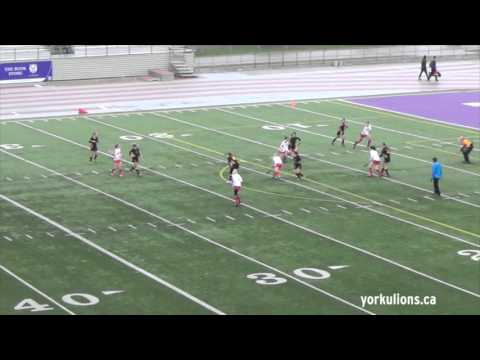 York Lions MUST SEE | Michelle Per