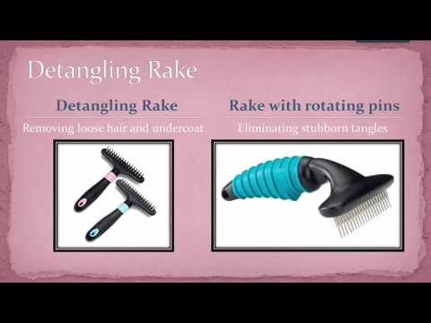 Poodle Grooming | Dog Brush and De-matting Tools