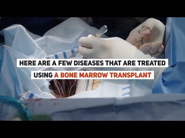 What is Bone Marrow Transplant ? | Bone Marrow Treatment | HBG Medical Assistance