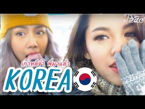 Vlog : KOREA เกาหลีจ๋าาา พี่มาแล้ว เที่ยวติดลบกับ The Face Shop | Wonderpeach