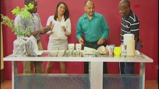 Benefits of the Moringa plant