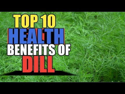 Top 10 Best Health Benefits of Fresh Dill, Health Care Tips