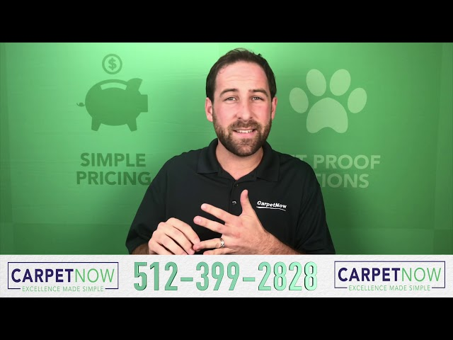 How Can Carpet Hold Up To Pet Stains?