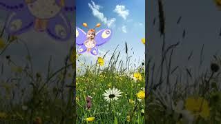 Lagu Anak kupu-kupu yang lucu