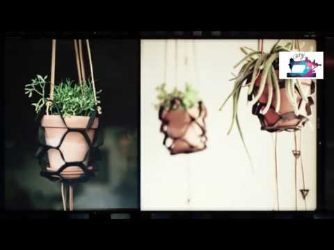 Как стильно подвесить комнатные растения