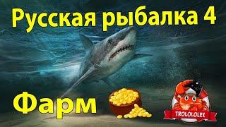 Русская рыбалка 4 Осётр русский Стерлядь Ахтуба