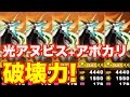 パズドラクロス 第14話 動画