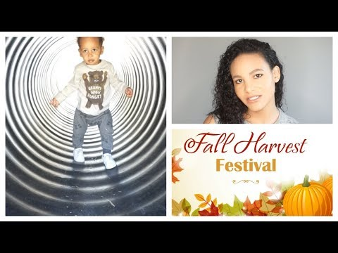 Alternative to Halloween | Fall Activity Great for Toddlers