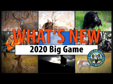 What's New: 2020 Colorado Big-Game Hunting
