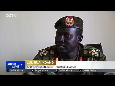 South Sudan army denies Egyptian involvement in Upper Nile attack