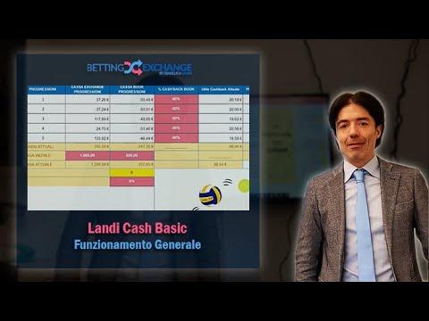 Funzionamento Generale Landi Cash Basic