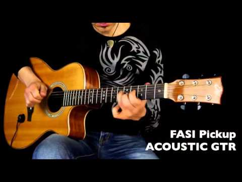 Eko Guitars: FASI Pickup a Ventosa (For All Stringed Instruments)