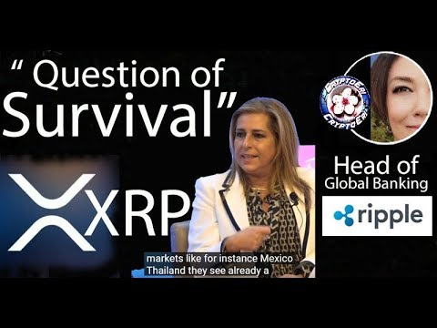 XRP Pools Volatility Insurance, Ripple ODL in Thailand & Mexico, Egypt Corridor, MoneyGram