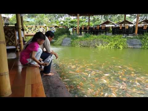 saung-rawa-lele-(tempat-wisata-makan-menarik-pinggir-jakarta)
