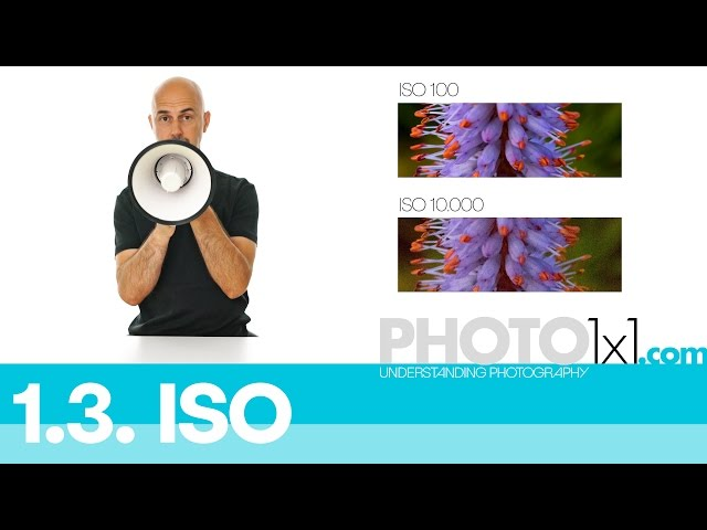 1.3. ISO explained - learn about ISO in less than 3 minutes - photo 1x1 the free photography course