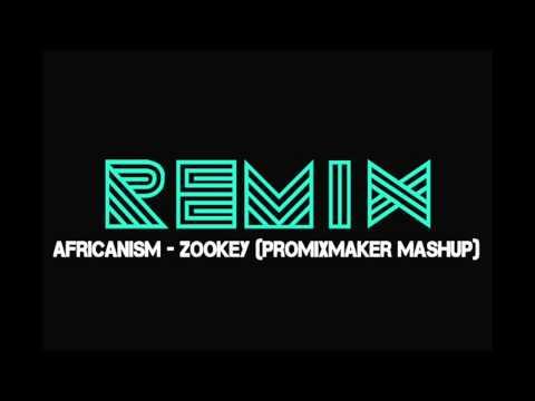 Africanism - Zookey (Remix)
