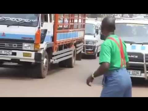 funny road crossing video