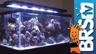 Led Lighting For Aquariums - Ep 3: Aquarium Lighting