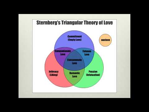 checkpoint sternbergs theory of love In this video you see me explaining the triangular theory of love by robert sternberg this was my seventh project at the toastmasters bossuet gaveliers club.