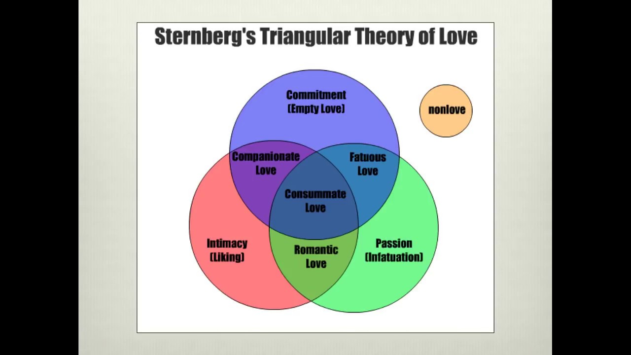 triangle theory of love essay Expectations from genders - sternber's triangular theory of love discussion essay management informal numbers value privacy.