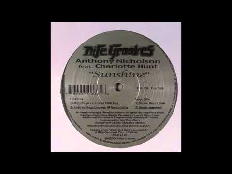 Anthony Nicholson - Sunshine (Sunstrumental)